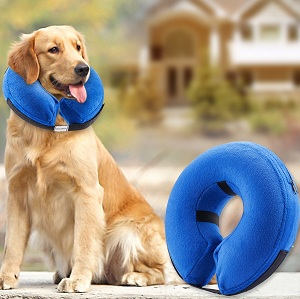 BENCMATE Protective Inflatable Collar