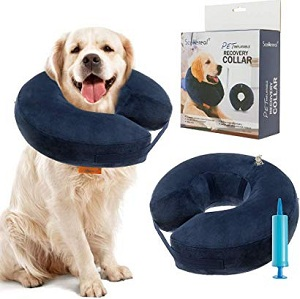 SCENEREAL Inflatable Recovery Collar for Dogs & Cats